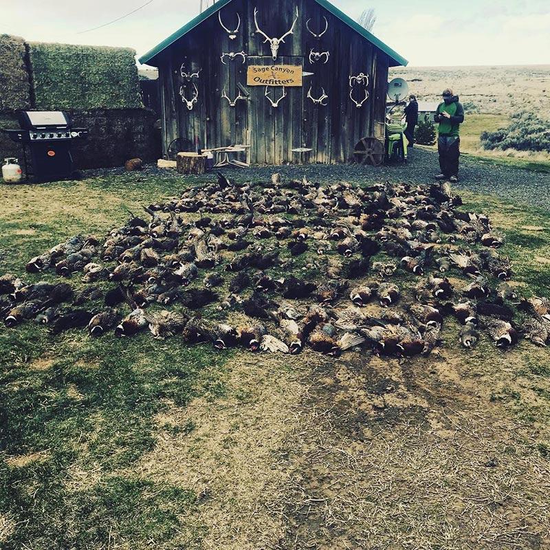 SageCanyonOutfitters-Hunting10